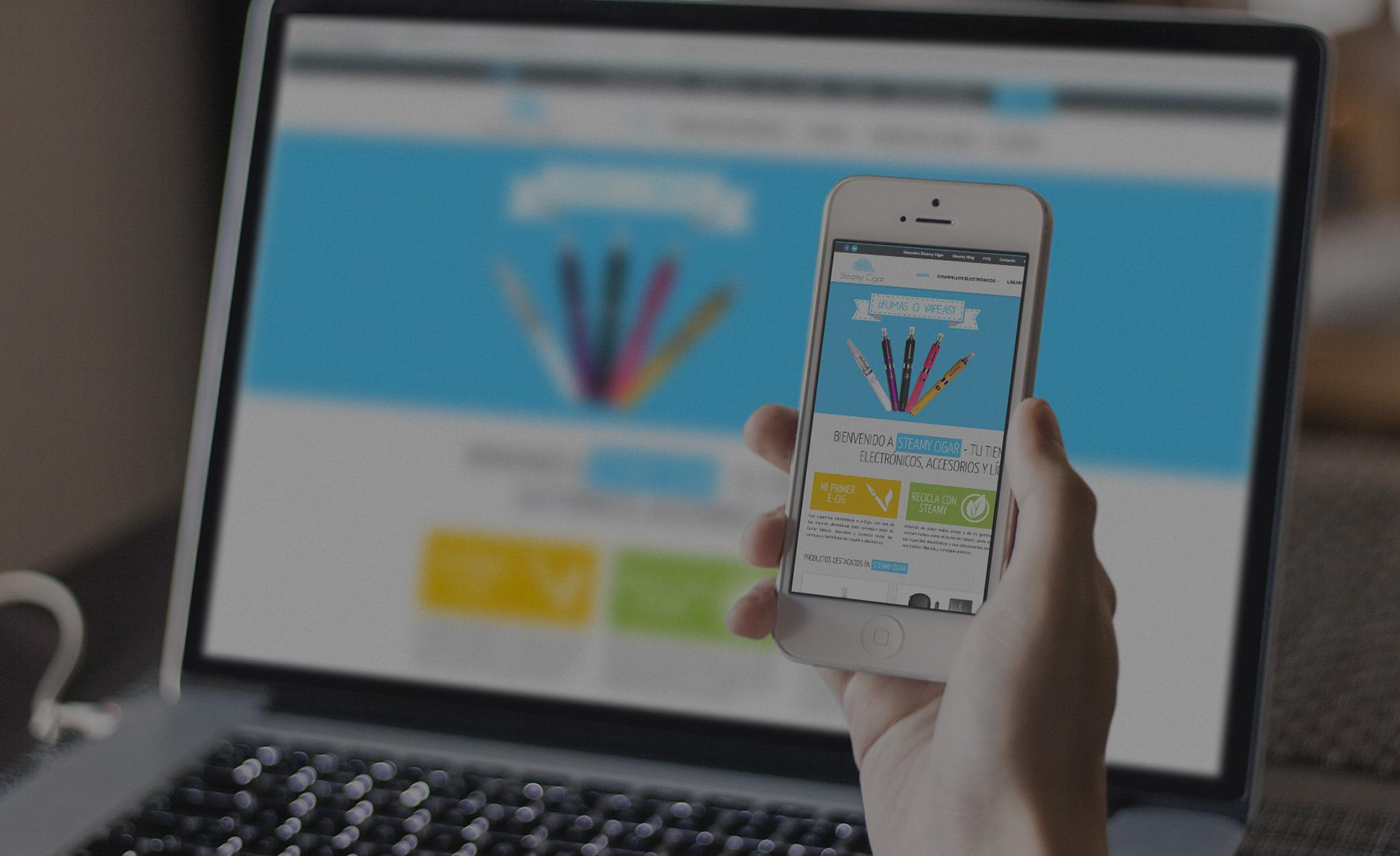 desarrollo web - sobrities agencia digital bolivia